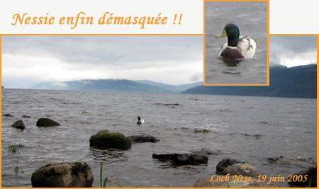 dans la brume épaisse d'une matinée de juin sur la rive sud du Loch Ness